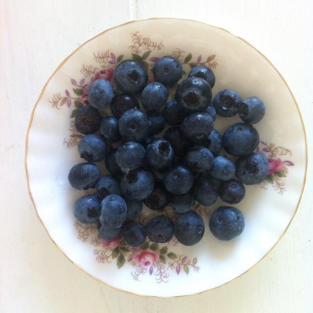 eetdagboek, blauwe bessen, bosbessen